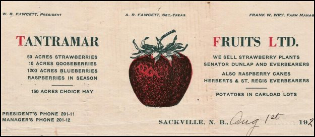 A.R. Fawcett letterhead advertising A.R. Fawcett berries dated August 1st 1923.