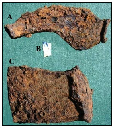 Figure 9. Artifacts recovered from the old basement at Israel's Point, Peck's Cove. A) Ox shoe, B) Shell-edged Pearlware pottery fragment (c. 1780–1830) and C) iron splitting wedge (C. MacKinnon photo).