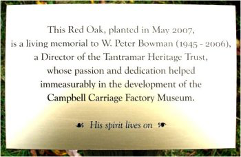 Plaque unveiled at the Red Oak tree