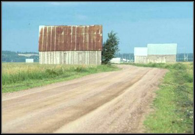 Marsh barns by dirt road