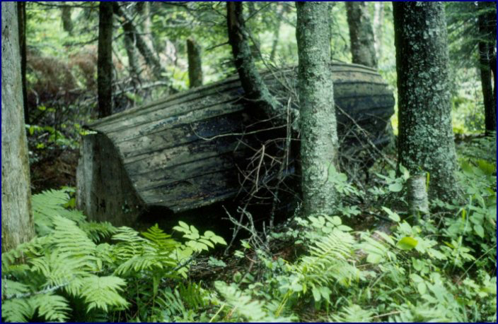 Remains of the fine old rowboat that once belonged to the Jolicure Lake Hunting Club. C. MacKinnon photo