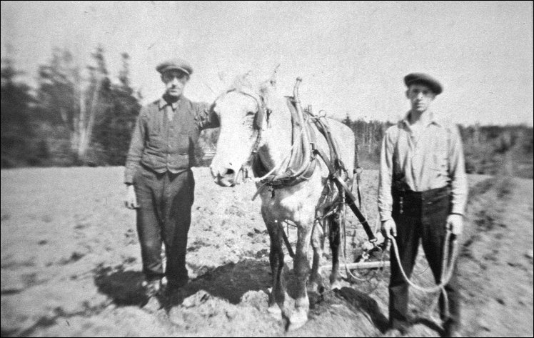 """Memories of bygone days: Bedford Cole and Percy Bowser cultivating a field in Upper Rockport, <abbr title=""""circa"""">c.</abbr>1940s. © Colin MacKinnon collection"""