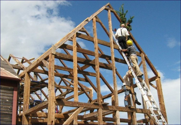 """Daniel takes a spruce sapling up the ladder for a traditional """"topping out"""" ceremony, to express gratitude to the Red Spruce that were felled to frame the Carriage Factory addition"""