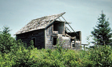 Photo of remains of Ward farmhouse