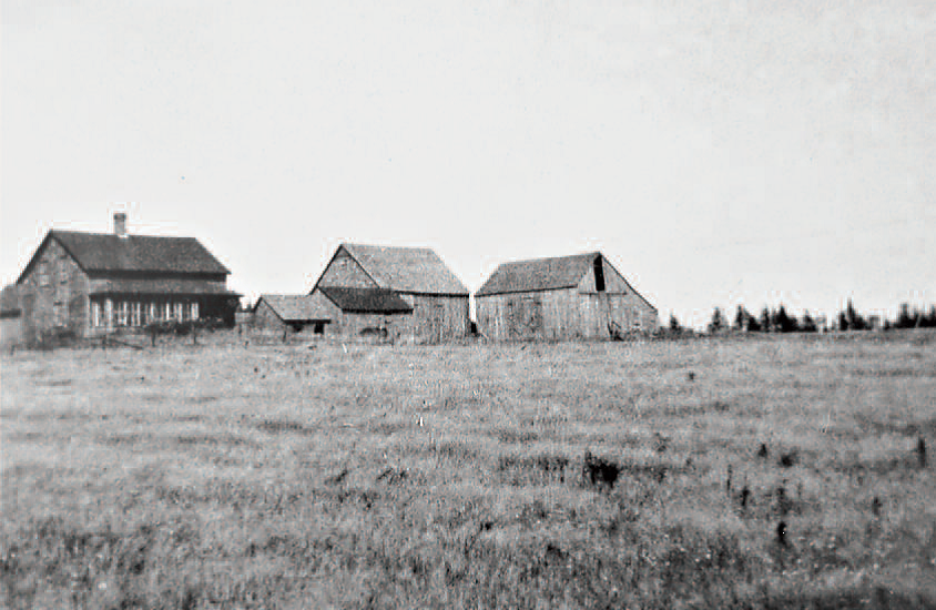 Photo of Thomas Mitton farm Fairfield, New Brunswick